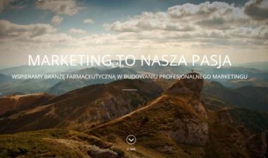 Akademia Marketingu - strona wordpress_m